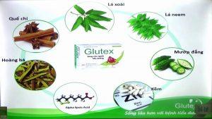 Glutex các thành phần chính