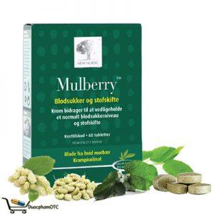 Mulberry dành cho người đường huyết cao