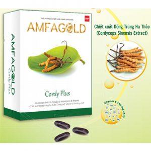 Amfagold Cordy Plus hỗ trợ tăng sinh lực