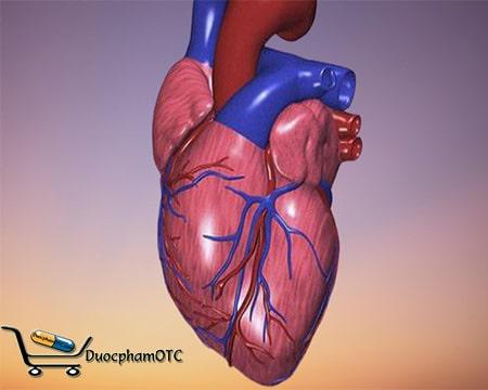 nguy cơ mắc bệnh tim mạch do béo phì
